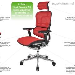 Ergonomic Chair Angle Dallas Cowboys Chairs Ergohuman Adjustments Plus Adjustable