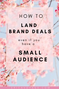 Want to land brand deals, even though you have a small audience? Read this blog to find out how YOU can land brand deals even if you have a small audience.