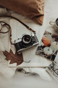 Are you looking for a warm and cozy fall wallpaper to remind you that even the cold can make you feel warm and fuzzy inside? The best fall wallpaper iPhone backgrounds cozy, including fall wallpaper iPhone cozy, cute fall wallpaper, fall wallpaper iPhone autumn, and much more! So, if you're after aesthetic fall wallpaper iPhone and cozy fall aesthetic wallpaper iPhone, why not check these out? #autumnvibes #fallwallpaper #fallwallpaper #fallmood #fallwallpaperiphonebackgrounds #iphonewallpapers #wallpaperbackgrounds #fallaesthetic #fallaestheticwallpaper