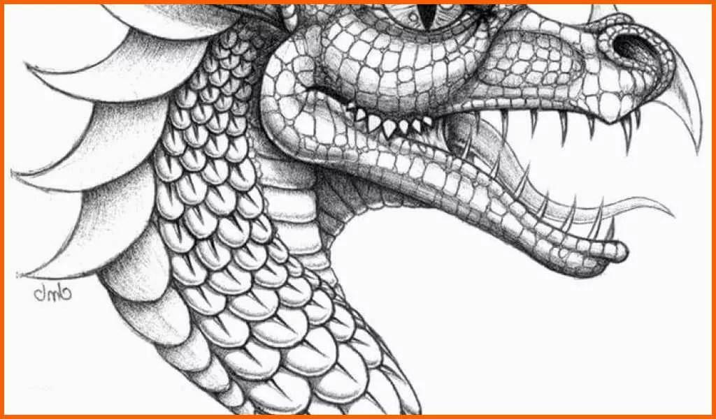 Selten Malvorlagen Von Drachen Vorlage Zum Zeichnen
