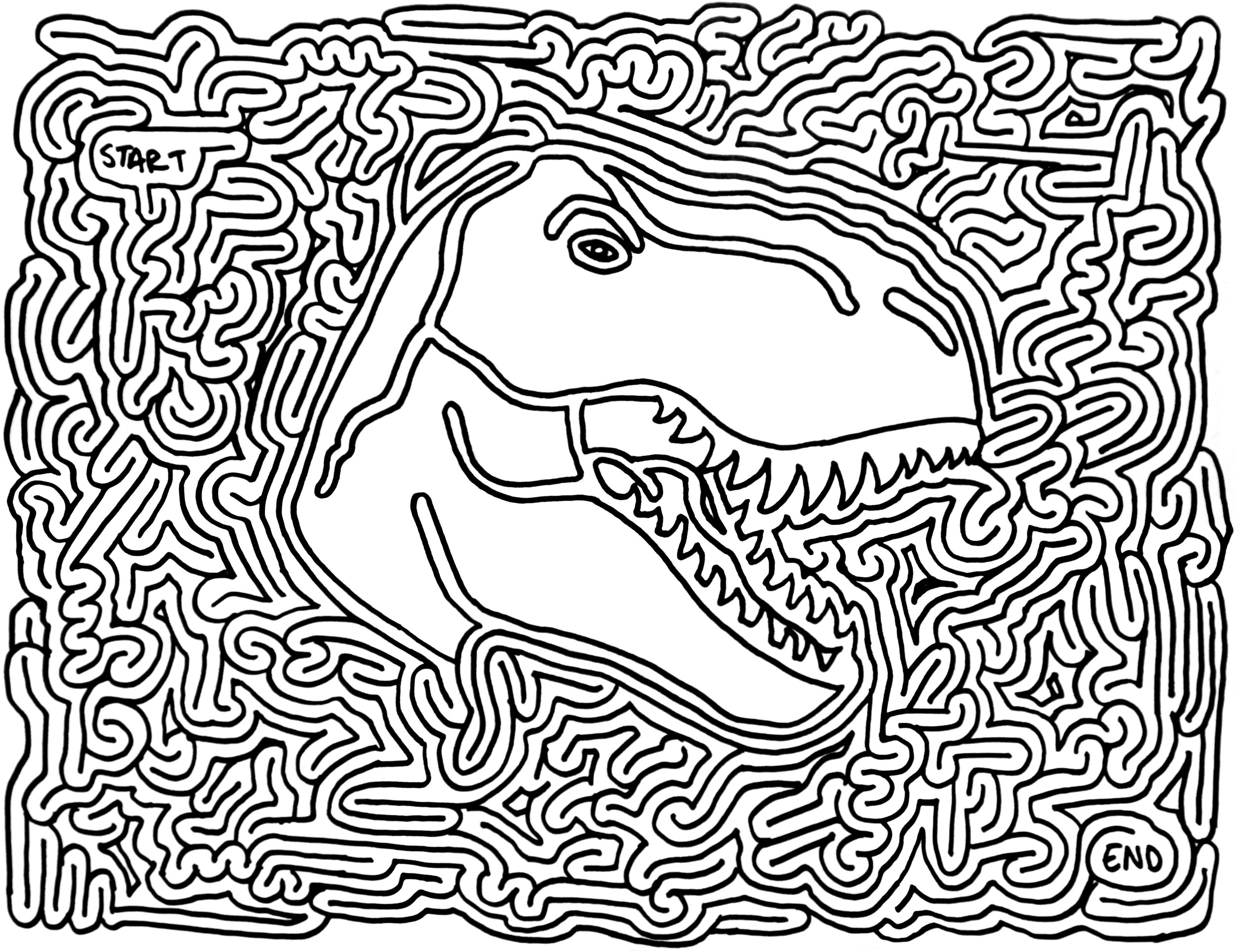 Maze Dinosaurs And Favors