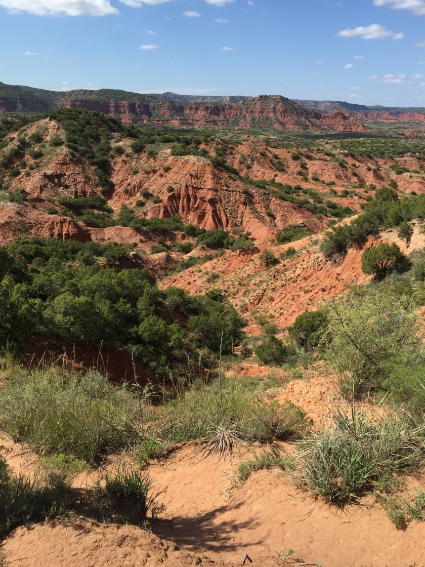 The photos just don't convey the vastness, the depth, the beauty of Caprock Canyons SP.