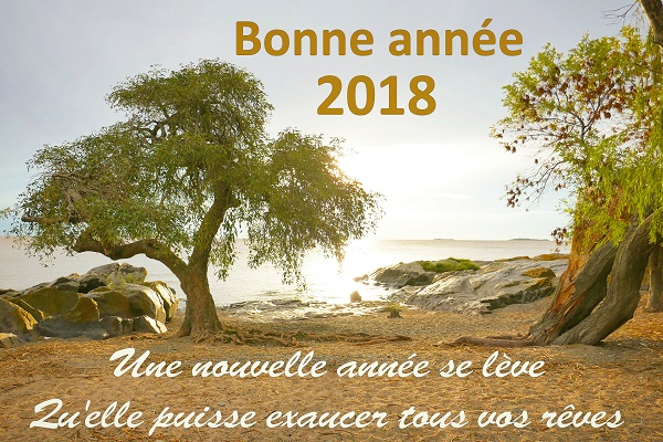 Bonne année 2018 Eric Maïolino