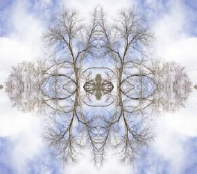 Treeflake