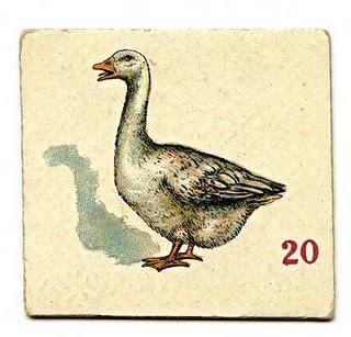 Duck? Duck? Goose.