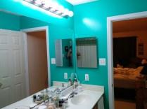 Bathroom New Paint-54