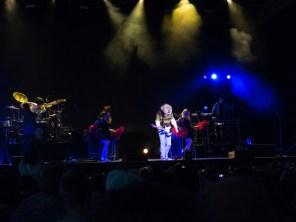 Weird Al Mandatory Fun Concert-39 - web