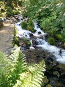 Multnomah Falls 011