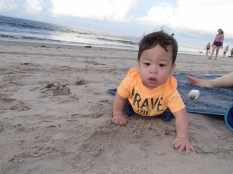 Exploring Crawling on the sand