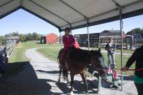 Scarlett riding a horse