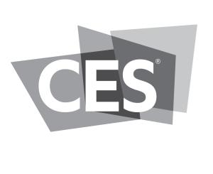 https://i0.wp.com/www.ericschwartzman.com/wp-content/uploads/2021/05/CES.png?resize=300%2C245&ssl=1