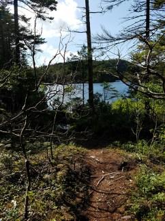 Sunrise Pond from Summit Trail
