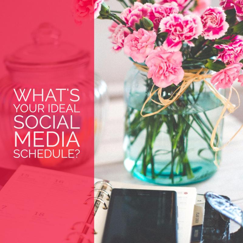 2017 Social Media Plan