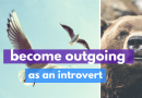 How To Become More Outgoing As An Introvert… Or As An Extravert?