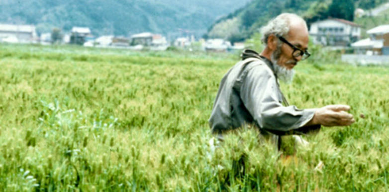 masanobu fukuoka natural farming one straw revolution profound