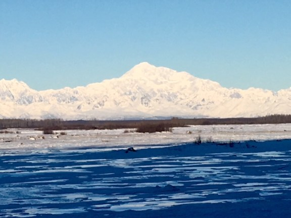 View of Denali in the morning