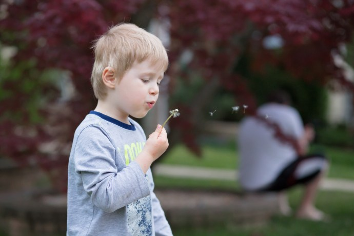 boy blowing flower