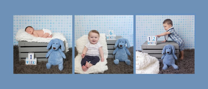 photo collage showing the same baby as a newborn, sitting at 6 months, and standing at 12 months