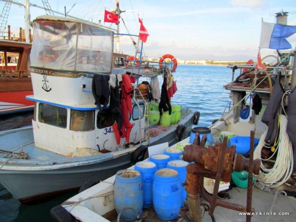 Deniz hıyarı toplayan balıkçı teknesi