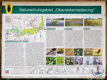 Info Tafel zum Naturschutzgebiet Oberalsterniederung