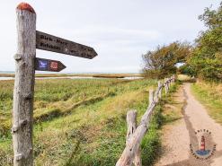 Wanderweg im Geltinger Birk