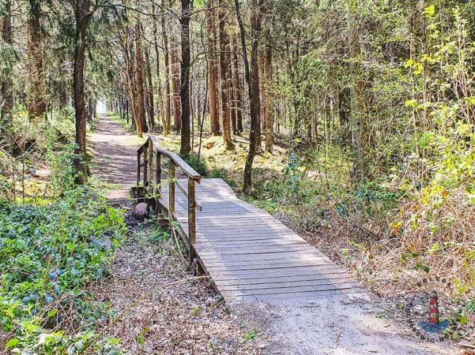 Wanderweg Mönkloh Waldlehrpfad Hasselbusch Brücke