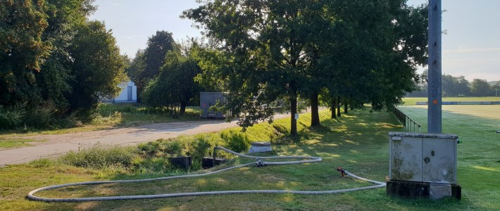 HINWEIS: Die Eichenprozessionspinner entlang des Sportplatzes wurden ERFOLGREICH entfernt!