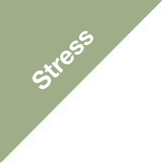 Stressreduktion durch Ernährung