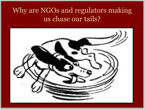 2014 05 24 snap Countenay presentation by Ernst AER NGOs making us chase our tails