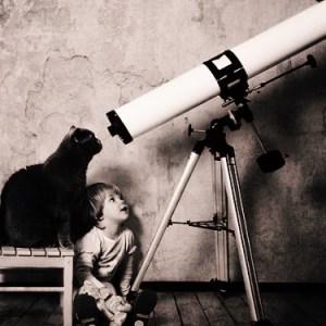 Colloqui col gatto: tetralogia buffa della saggezza