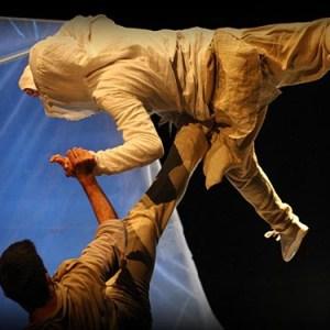 Danza al Piccolo Bellini: Riot - Lupi della Companhia de dança Almada