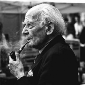 antisistema Zygmunt Bauman