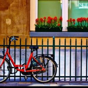 La ragazza con la bicicletta rossa, la Shoah olandese