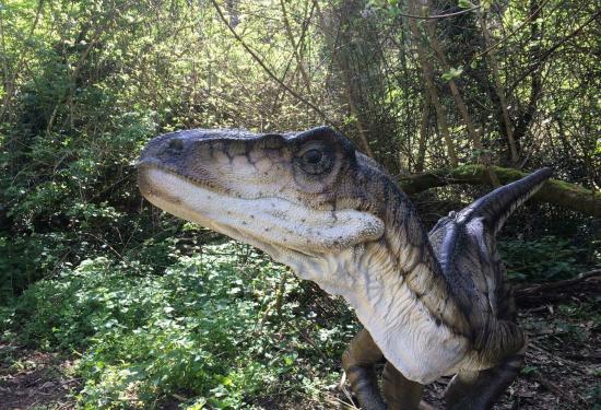 Dinosauri alla riserva naturale Cratere degli Astroni