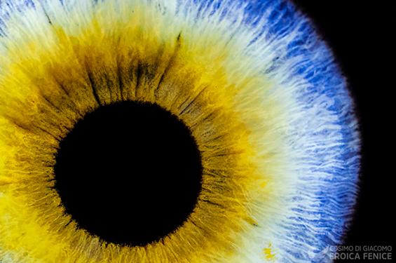 Oltre il buio: Blind Vision per l'Istituto Paolo Colosimo di Napoli