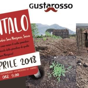 """DANIcoop, Il 23 aprile a Sarno """"Piantalo!"""""""