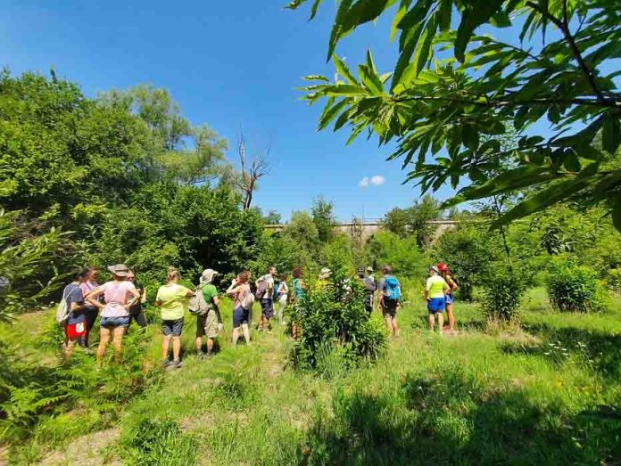 Trekking in Vigna