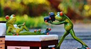 Unseriösen Fotografen erkennen - Vorsicht vor falschen Shootings!