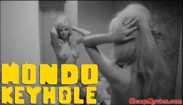Worst Crime of Them All aka Mondo Keyhole (1966) watch online