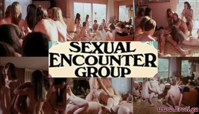 Sexual Encounter Group (1970) watch online