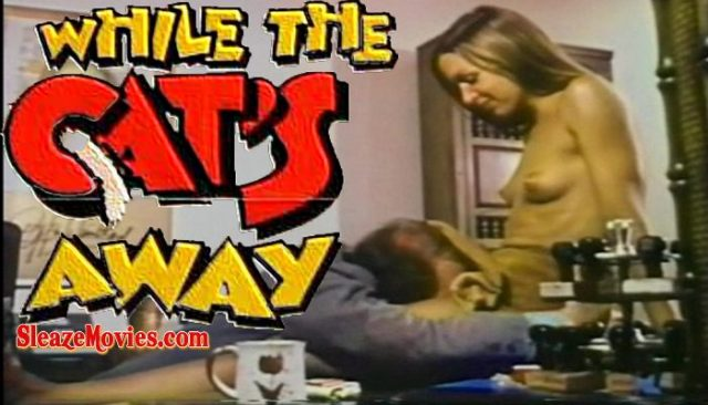 While the Cat's Away (1972) watch online