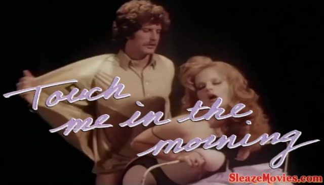 Touch Me in the Morning (1981) watch online