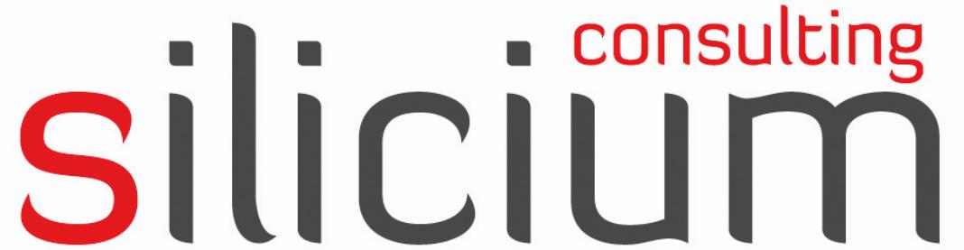 Silicium Consulting GmbH