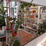 R nel bosco Reggio emilia negozio interno esterno