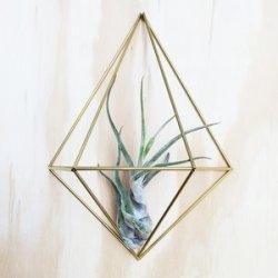 himmeli wall planter Diamond - DIY - decorazioni da parete - tillandsie - R nel bosco