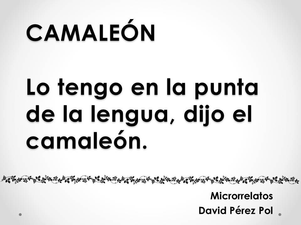 Camaleón, microrrelato de David Pérez Pol