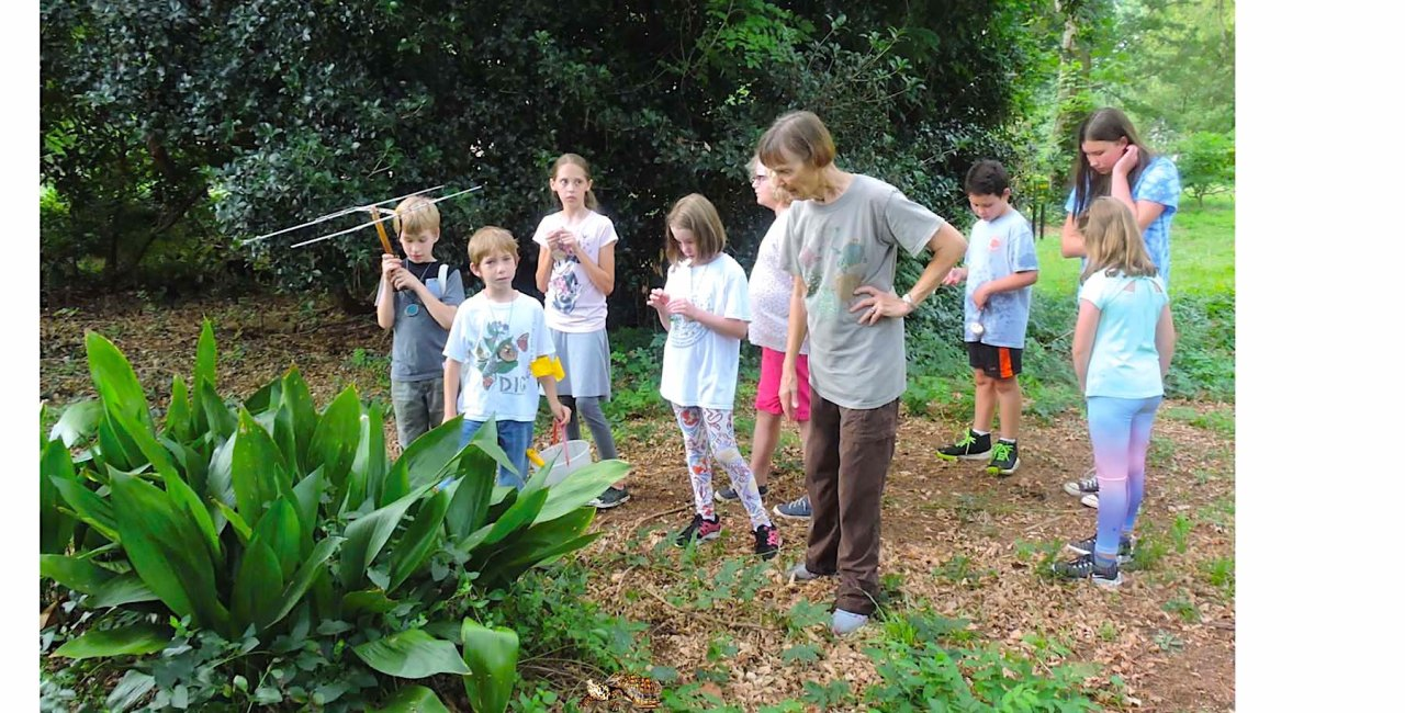Summer Vacation On The Erskine Campus: Discovery Garden 2019