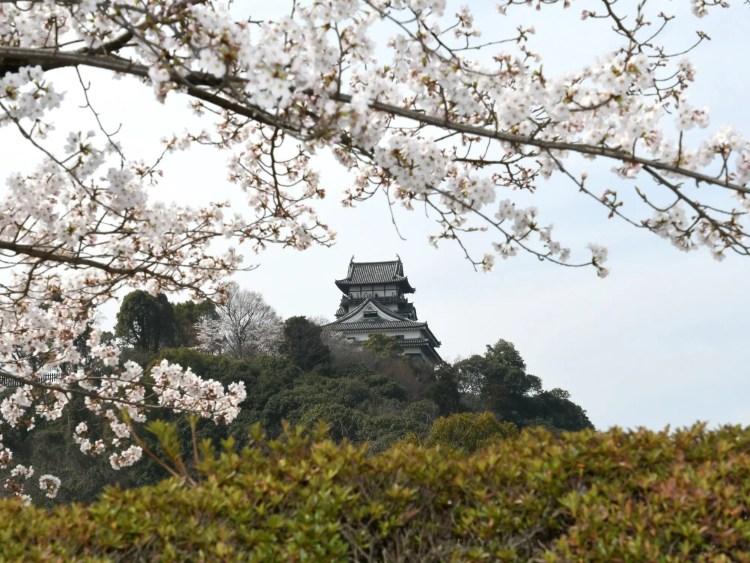 Kasteel Inuyama