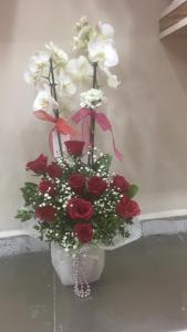 orkide güller