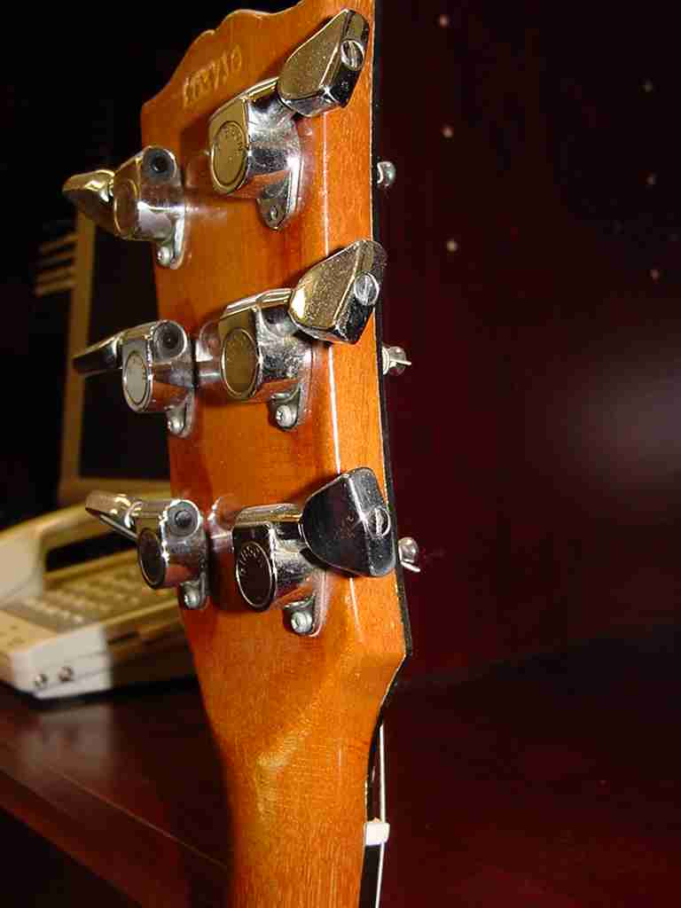 hight resolution of the gibson es 335 2010 june on yamaha wiring harness sg wiring